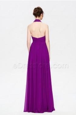 Raspberry Halter Backless Prom Dresses Long Elegant
