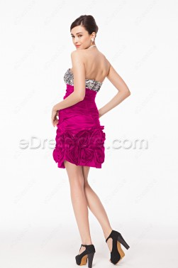 Silver Sequin Hot pink Homecoming Dresses with Flowers